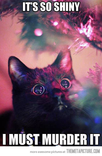 funny-cat-shinning-light-christmas-tree